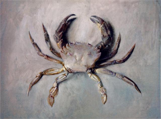 velvet-crab-1871.jpg!HalfHD